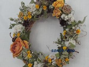 Dsc03650_convert_20120306182557